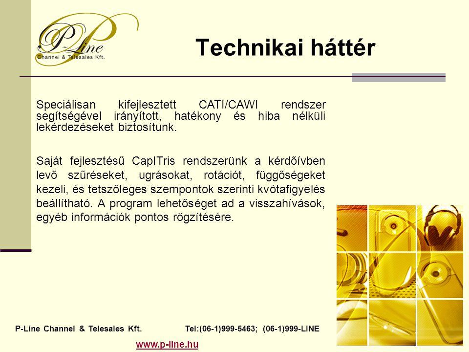 Technikai háttér Speciálisan kifejlesztett CATI/CAWI rendszer segítségével irányított, hatékony és hiba nélküli lekérdezéseket biztosítunk.
