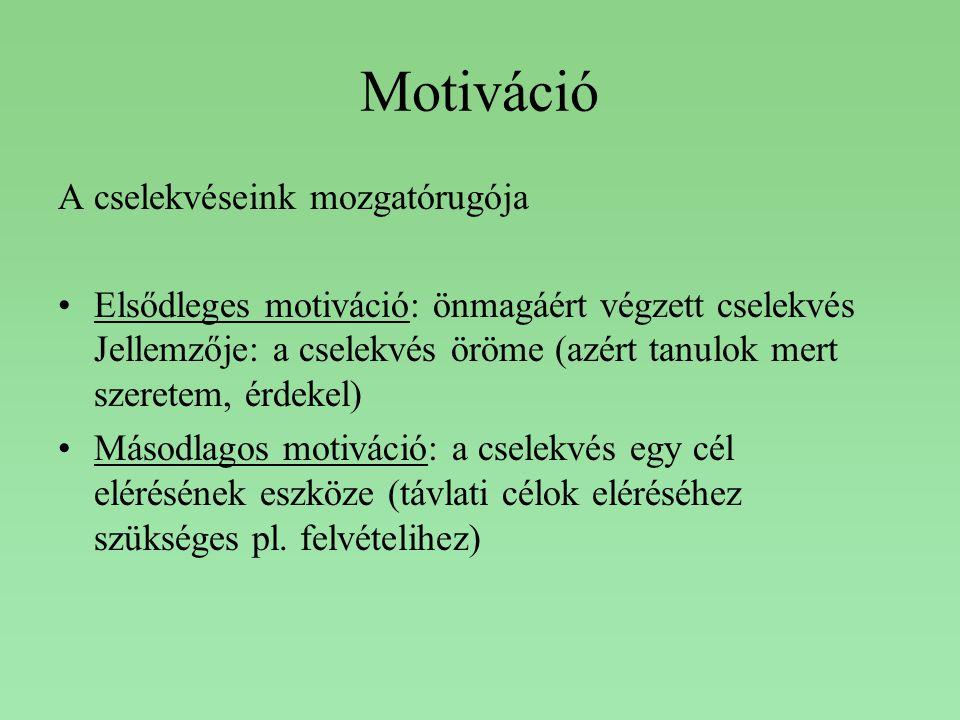 Motiváció A cselekvéseink mozgatórugója Elsődleges motiváció: önmagáért végzett cselekvés Jellemzője: a cselekvés öröme (azért tanulok mert szeretem,