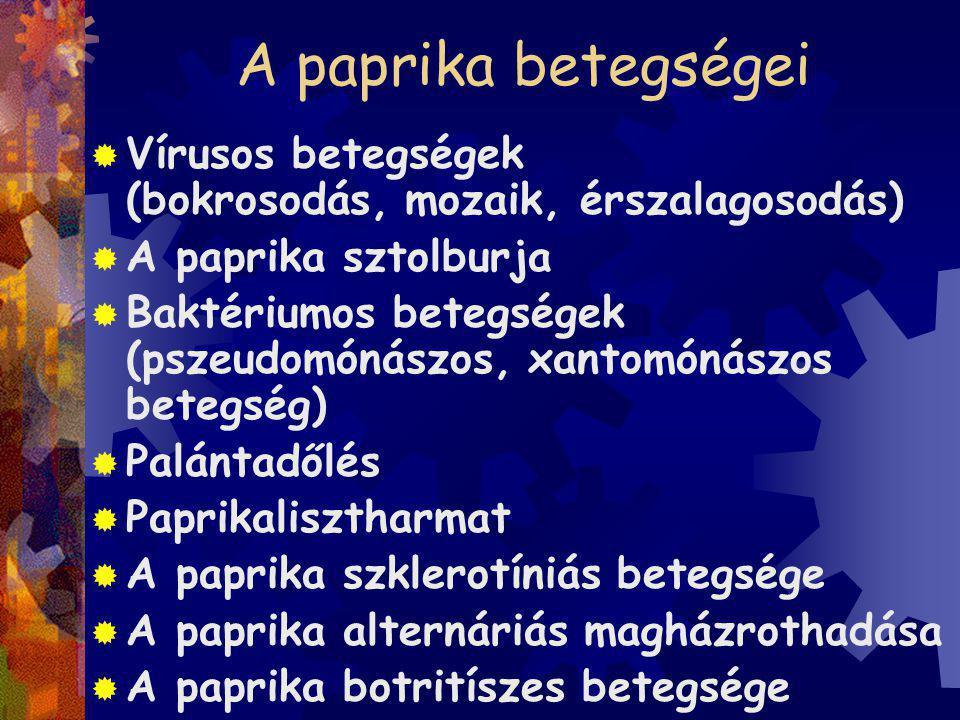  Növényházban: tobamovírusok, paradicsom bronzfoltosság vírus  Szántóföldön: uborka mozaik vírus, burgonya Y vírus  Tobamovírusok: dohány (paprika) mozaik vírus és a paprika enyhe foltosság vírus okozza a legnagyobb károkat, mechanikai úton terjednek (szedés, metszés,kötözés), vetőmaggal is (fémzárolt vetőmag), talajjal is (növénymaradványok).
