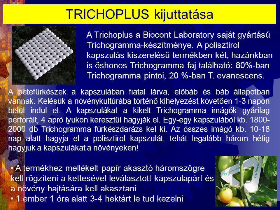 TRICHOPLUS kijuttatása A petefürkészek a kapszulában fiatal lárva, előbáb és báb állapotban vannak. Kelésük a növénykultúrába történő kihelyezést köve