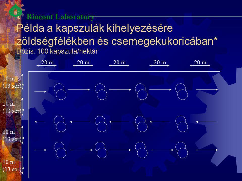 Példa a kapszulák kihelyezésére zöldségfélékben és csemegekukoricában* Dózis: 100 kapszula/hektár 20 m 10 m (13 sor)* 10 m (13 sor)* 10 m (13 sor)* Bi
