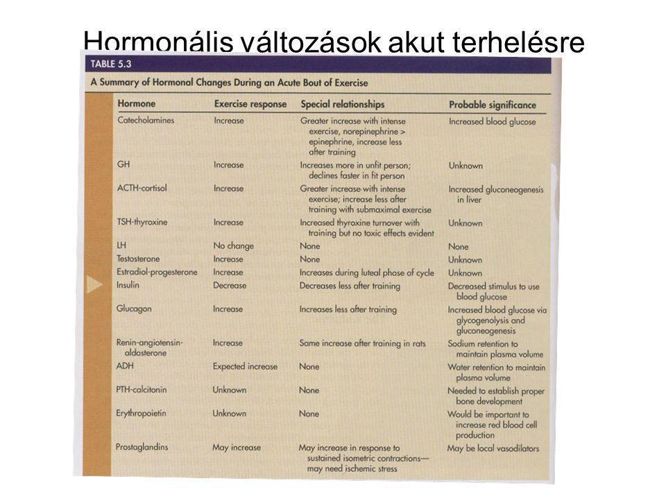 Hormonális változások akut terhelésre