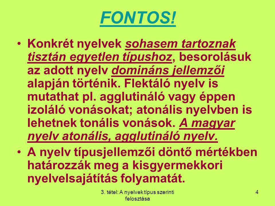 3. tétel: A nyelvek típus szerinti felosztása 4 FONTOS! Konkrét nyelvek sohasem tartoznak tisztán egyetlen típushoz, besorolásuk az adott nyelv dominá