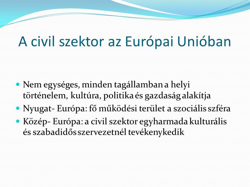 A civil szektor az Európai Unióban Nem egységes, minden tagállamban a helyi történelem, kultúra, politika és gazdaság alakítja Nyugat- Európa: fő műkö
