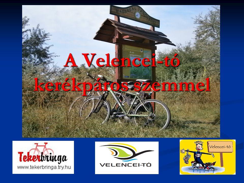 2 Tartalom A kerékpárosok száma a Velencei-tónál A kerékpárosok száma a Velencei-tónál Kerékpárosok összetétele a Velencei-tónál Kerékpárosok összetétele a Velencei-tónál Mi jellemzi a kerékpáros turistát .