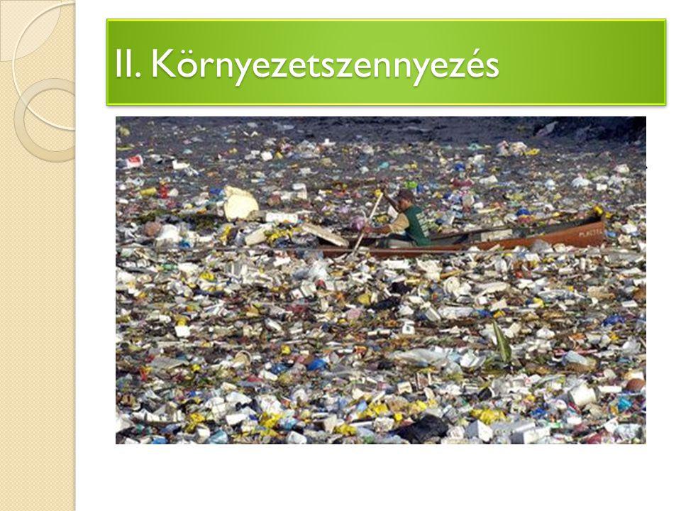 Négy nagy korszakra bonthatjuk: A környezetvédelem előtörténete A rádöbbenés korszaka (1960-as évek) A környezetvédelem intézményesülésének, hivatalos elismerésének korszaka (1970-es évek) A hatékony intézkedések, programok, nemzetközi együttműködések korszaka (1980-as évektől) III.