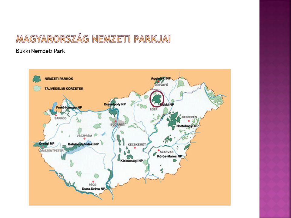 Bükki Nemzeti Park