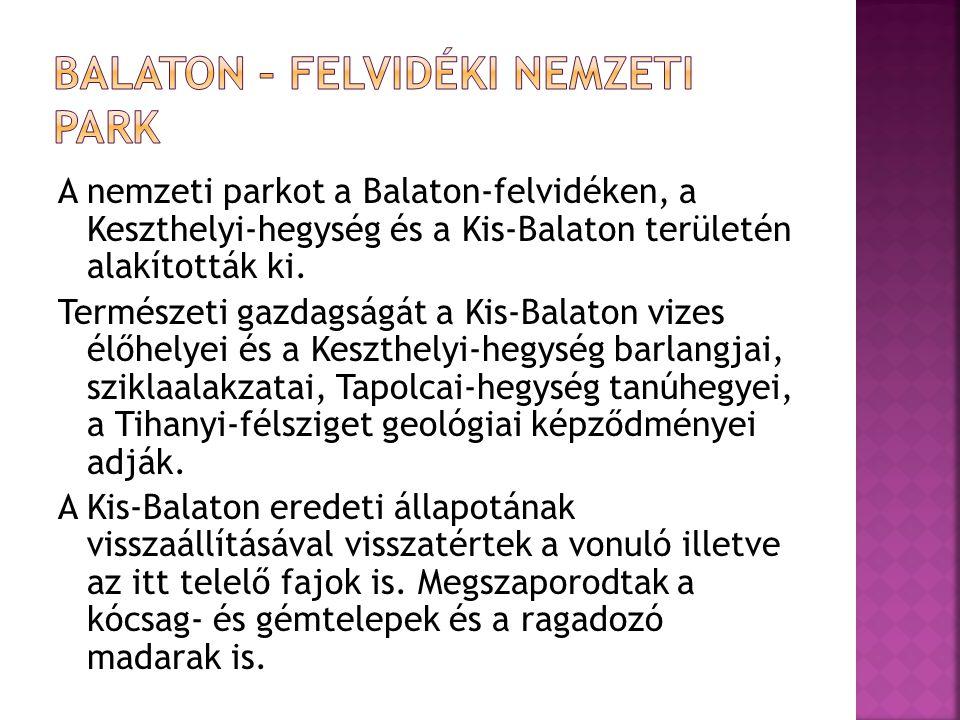 A nemzeti parkot a Balaton-felvidéken, a Keszthelyi-hegység és a Kis-Balaton területén alakították ki. Természeti gazdagságát a Kis-Balaton vizes élőh