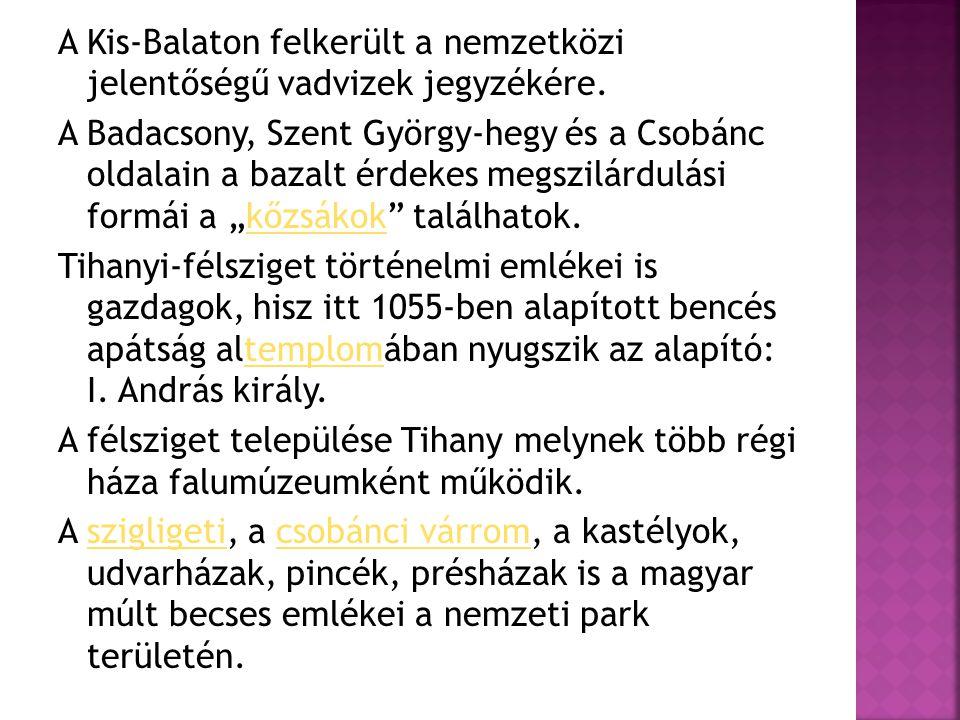 A Kis-Balaton felkerült a nemzetközi jelentőségű vadvizek jegyzékére. A Badacsony, Szent György-hegy és a Csobánc oldalain a bazalt érdekes megszilárd
