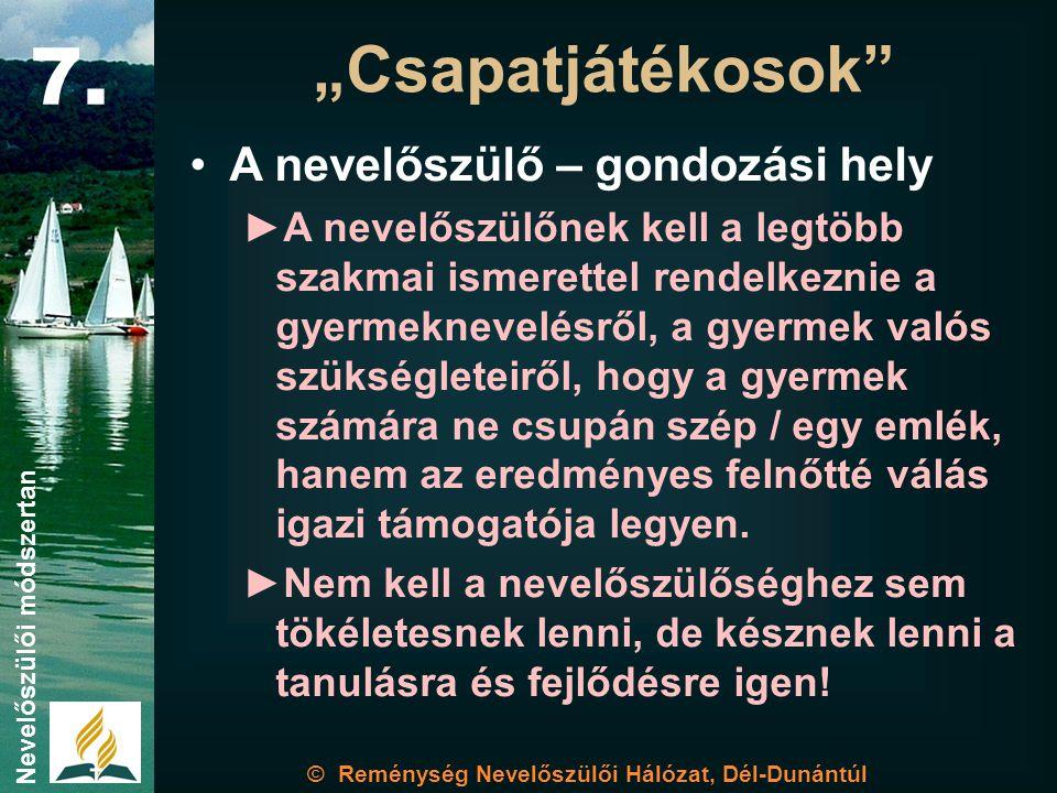 """© Reménység Nevelőszülői Hálózat, Dél-Dunántúl Nevelőszülői módszertan """"Csapatjátékosok 7."""