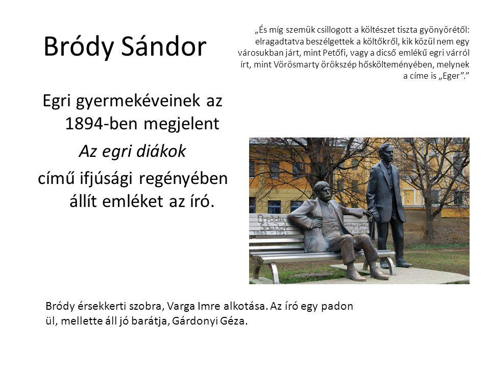 Bródy Sándor Egri gyermekéveinek az 1894-ben megjelent Az egri diákok című ifjúsági regényében állít emléket az író. Bródy érsekkerti szobra, Varga Im