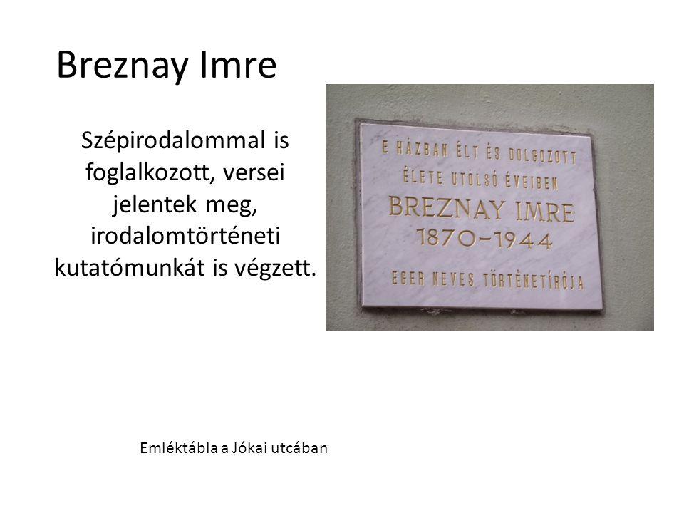 Breznay Imre Szépirodalommal is foglalkozott, versei jelentek meg, irodalomtörténeti kutatómunkát is végzett. Emléktábla a Jókai utcában