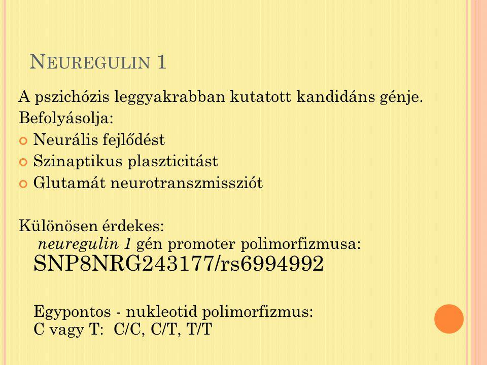 N EUREGULIN 1 A pszichózis leggyakrabban kutatott kandidáns génje.