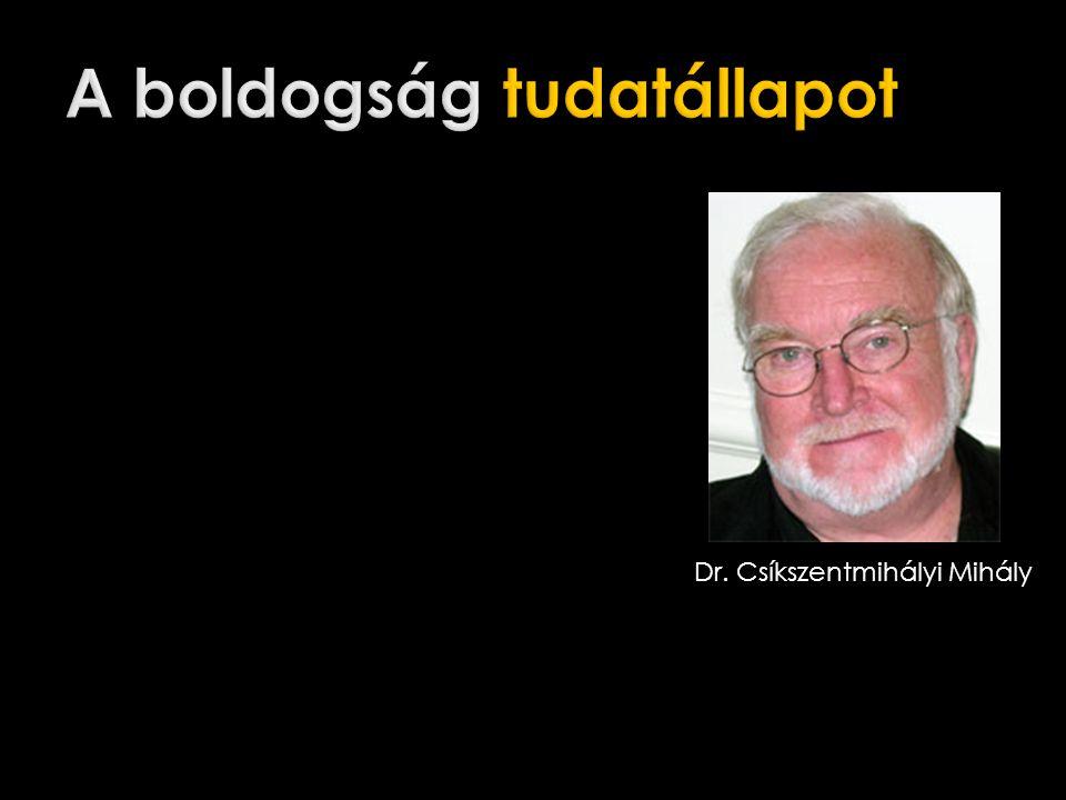 Dr. Csíkszentmihályi Mihály