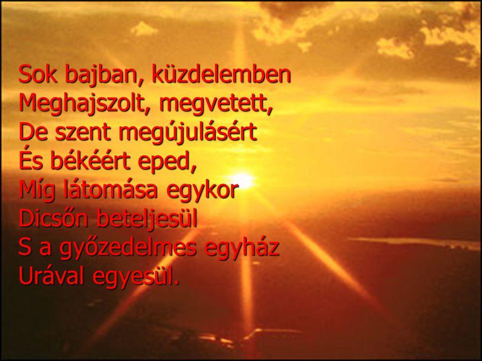 Sok bajban, küzdelemben Meghajszolt, megvetett, De szent megújulásért És békéért eped, Míg látomása egykor Dicsőn beteljesül S a győzedelmes egyház Ur