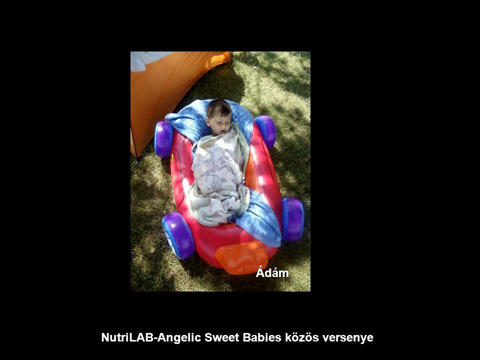 NutriLAB-Angelic Sweet Babies közös versenye