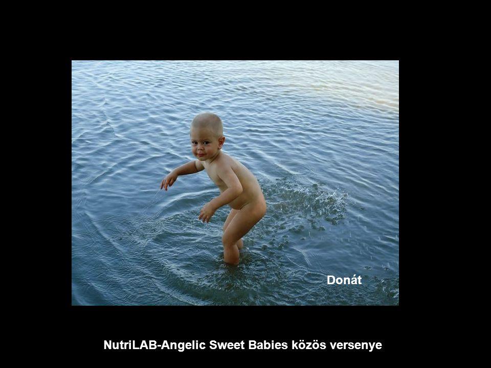 NutriLAB-Angelic Sweet Babies közös versenye Donát
