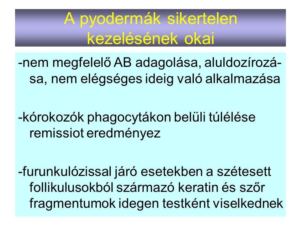 A pyodermák sikertelen kezelésének okai -nem megfelelő AB adagolása, aluldozírozá- sa, nem elégséges ideig való alkalmazása -kórokozók phagocytákon be