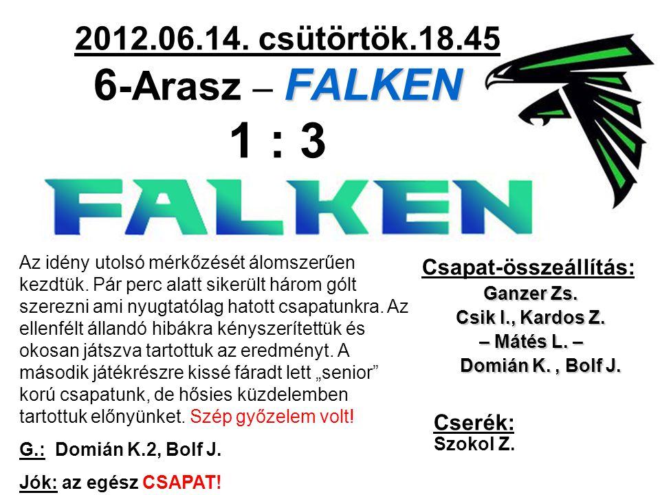 FALKEN 2012.06.14. csütörtök.18.45 6 -Arasz – FALKEN 1 : 3 Csapat-összeállítás: Ganzer Zs.