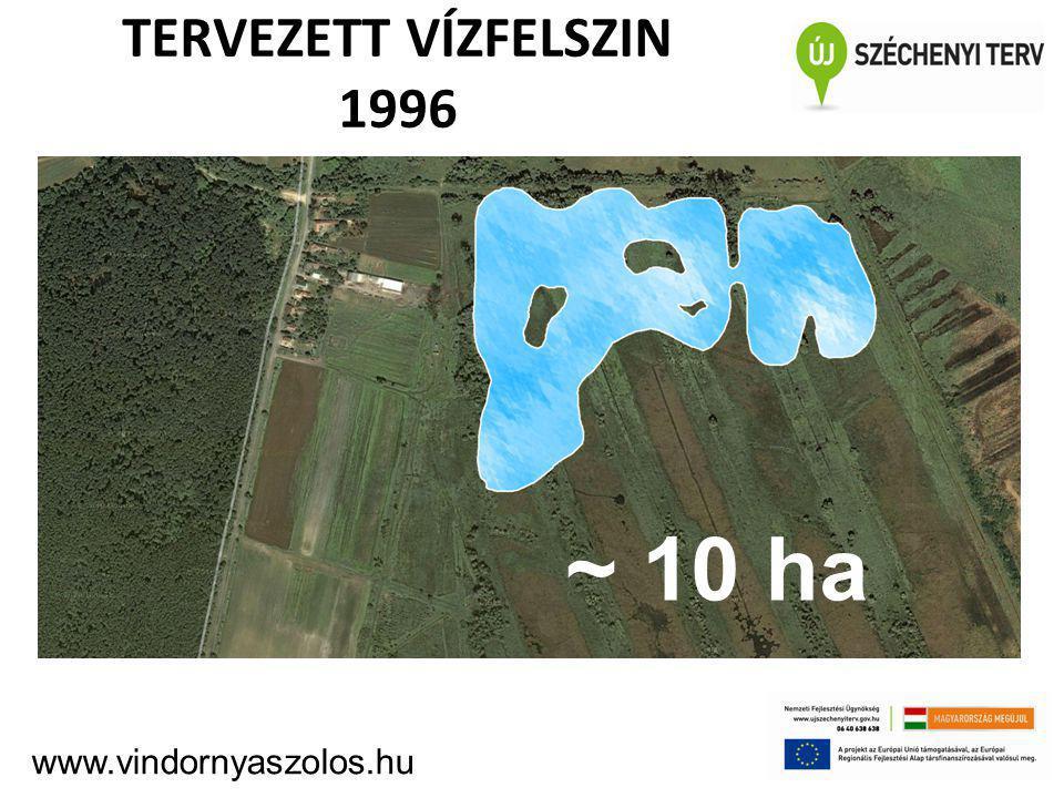 TERVEZETT VÍZFELSZIN 1996 ~10 ha www.vindornyaszolos.hu ~ 10 ha