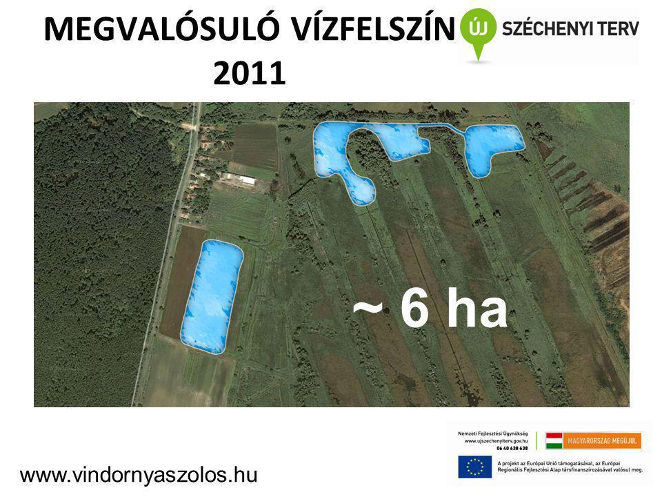 MEGVALÓSULÓ VÍZFELSZÍN 2011 ~ 6 ha www.vindornyaszolos.hu