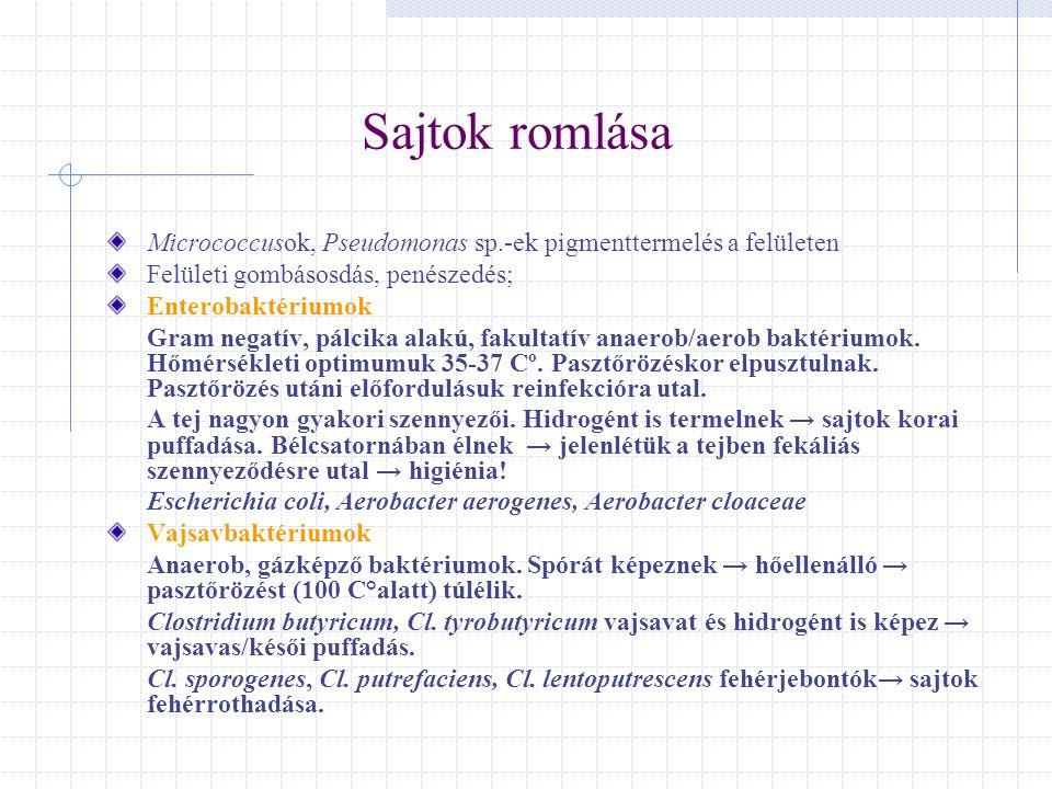 Sajtok romlása Micrococcusok, Pseudomonas sp.-ek pigmenttermelés a felületen Felületi gombásosdás, penészedés; Enterobaktériumok Gram negatív, pálcika
