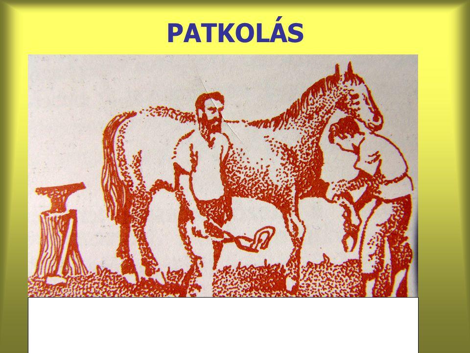 PATKOLÁS
