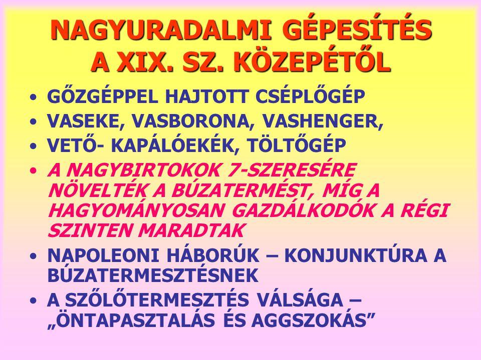NAGYURADALMI GÉPESÍTÉS A XIX.SZ.