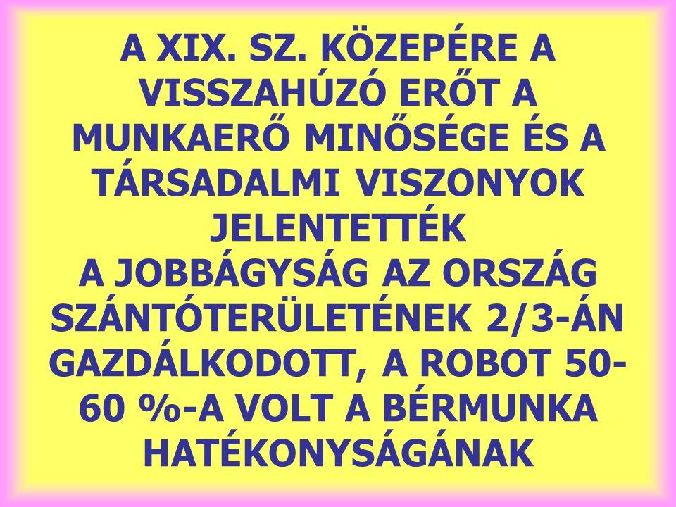 A XIX.SZ.