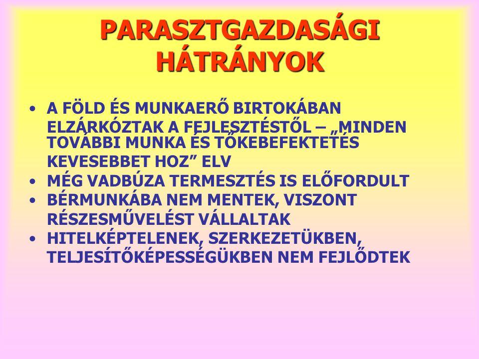 """PARASZTGAZDASÁGI HÁTRÁNYOK A FÖLD ÉS MUNKAERŐ BIRTOKÁBAN ELZÁRKÓZTAK A FEJLESZTÉSTŐL – """"MINDEN TOVÁBBI MUNKA ÉS TŐKEBEFEKTETÉS KEVESEBBET HOZ"""" ELV MÉG"""