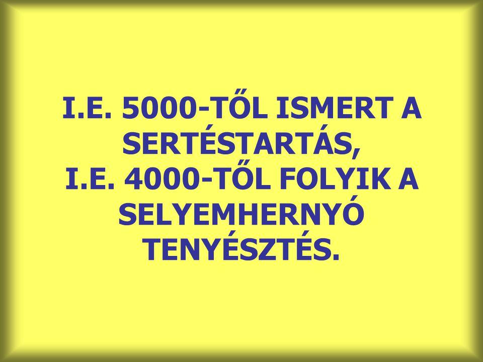 I.E. 5000-TŐL ISMERT A SERTÉSTARTÁS, I.E. 4000-TŐL FOLYIK A SELYEMHERNYÓ TENYÉSZTÉS.