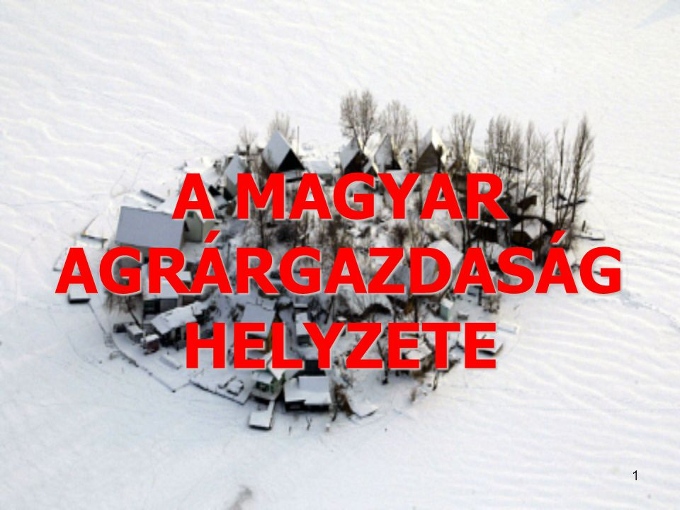 1 A MAGYAR AGRÁRGAZDASÁG HELYZETE