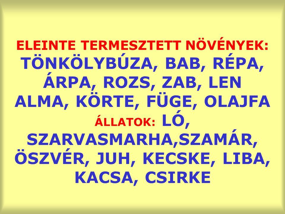 ELEINTE TERMESZTETT NÖVÉNYEK: TÖNKÖLYBÚZA, BAB, RÉPA, ÁRPA, ROZS, ZAB, LEN ALMA, KÖRTE, FÜGE, OLAJFA ÁLLATOK: LÓ, SZARVASMARHA,SZAMÁR, ÖSZVÉR, JUH, KE