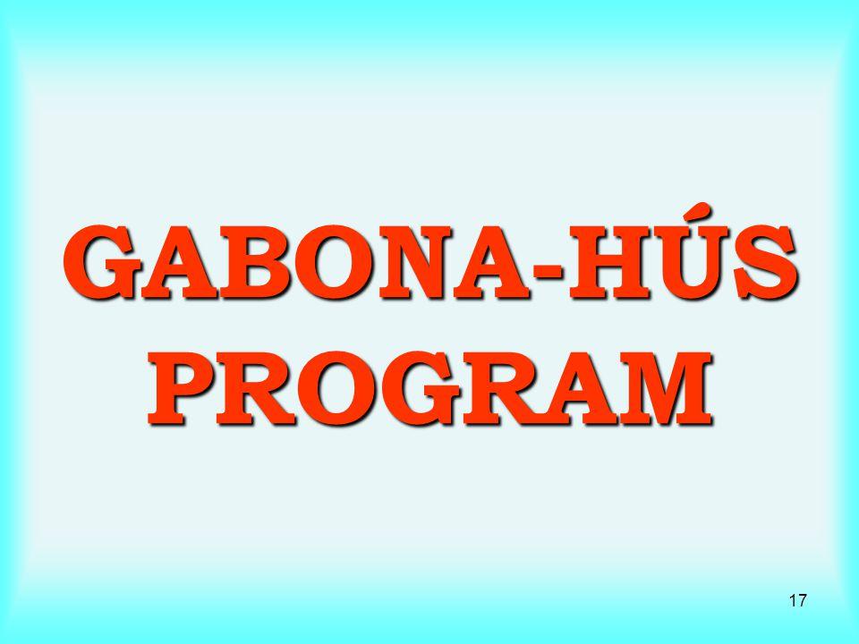 17 GABONA-HÚS PROGRAM