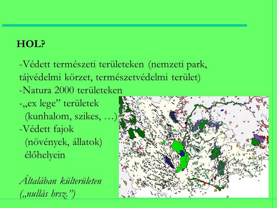 """HOL? -Védett természeti területeken (nemzeti park, tájvédelmi körzet, természetvédelmi terület) -Natura 2000 területeken -""""ex lege"""" területek (kunhalo"""