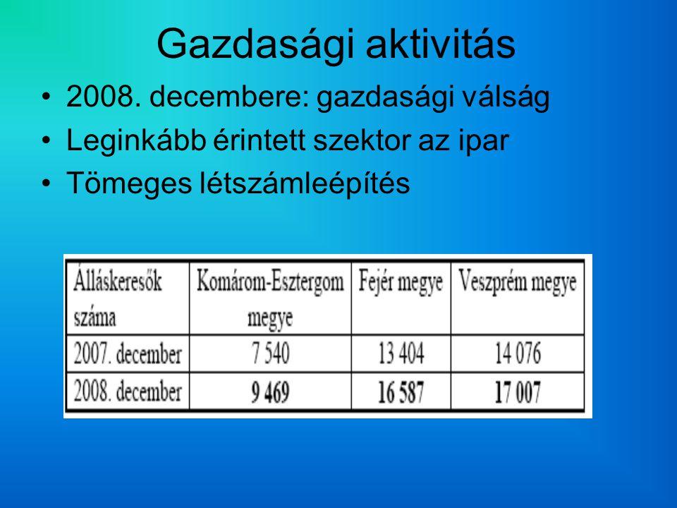 Gazdasági aktivitás 2008.