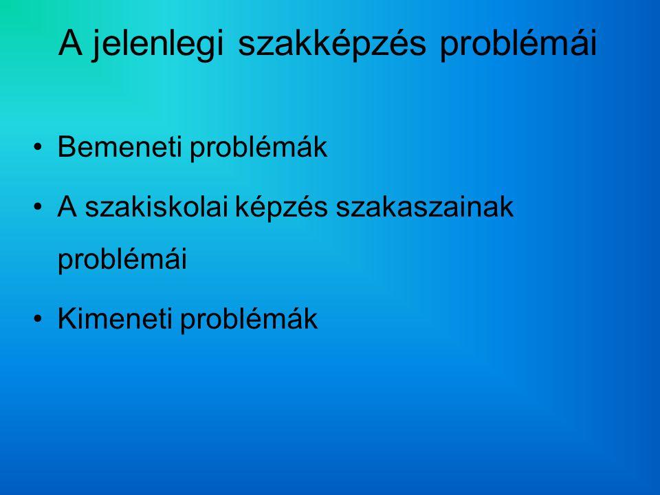A jelenlegi szakképzés problémái Bemeneti problémák A szakiskolai képzés szakaszainak problémái Kimeneti problémák