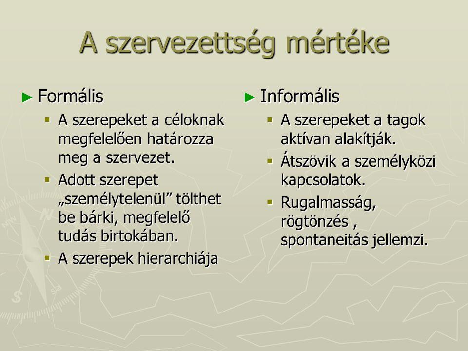 Emberképek és szervezeti működés IV.