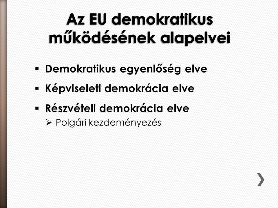  Demokratikus egyenlőség elve  Képviseleti demokrácia elve  Részvételi demokrácia elve  Polgári kezdeményezés
