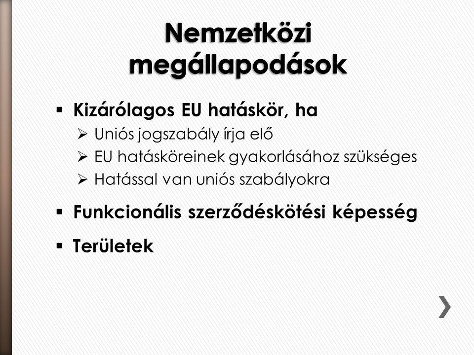  Kizárólagos EU hatáskör, ha  Uniós jogszabály írja elő  EU hatásköreinek gyakorlásához szükséges  Hatással van uniós szabályokra  Funkcionális s