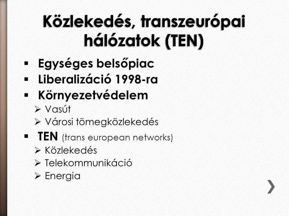  Egységes belsőpiac  Liberalizáció 1998-ra  Környezetvédelem  Vasút  Városi tömegközlekedés  TEN (trans european networks)  Közlekedés  Teleko