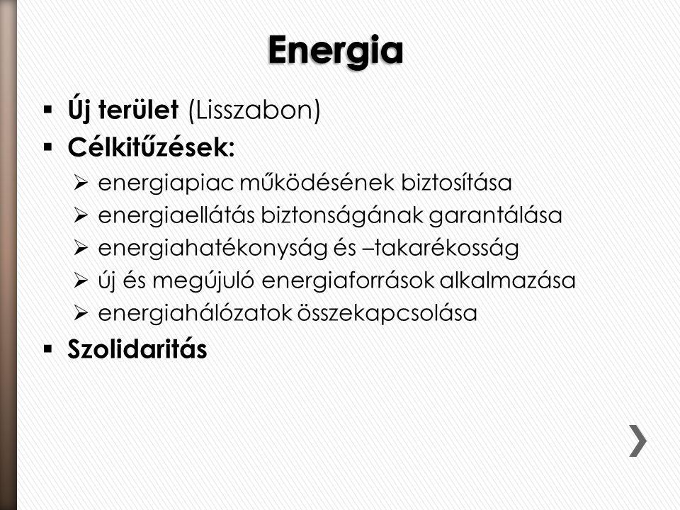  Új terület (Lisszabon)  Célkitűzések:  energiapiac működésének biztosítása  energiaellátás biztonságának garantálása  energiahatékonyság és –tak