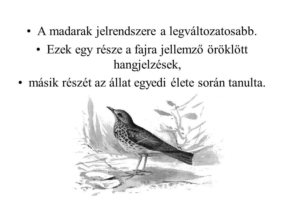 A madarak jelrendszere a legváltozatosabb. Ezek egy része a fajra jellemző öröklött hangjelzések, másik részét az állat egyedi élete során tanulta.
