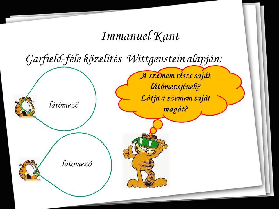 Immanuel Kant Garfield-féle közelítés Wittgenstein alapján: A szemem része saját látómezejének? Látja a szemem saját magát? látómező