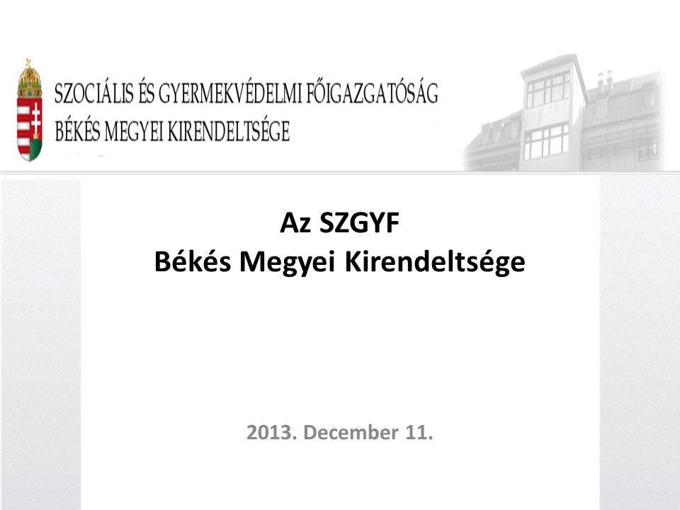 Az SZGYF Békés Megyei Kirendeltsége 2013. December 11.