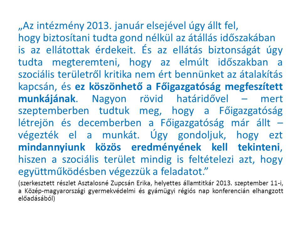 """""""Az intézmény 2013."""