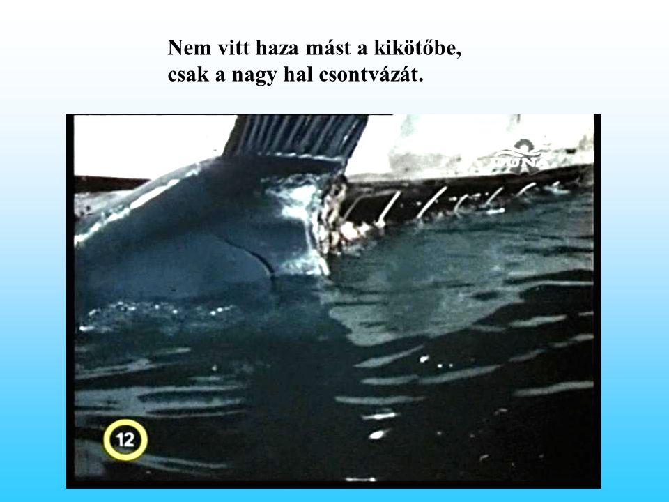 Nem vitt haza mást a kikötőbe, csak a nagy hal csontvázát.