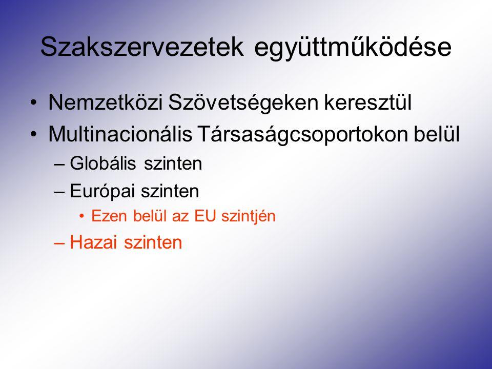 Szakszervezetek együttműködése Nemzetközi Szövetségeken keresztül Multinacionális Társaságcsoportokon belül –Globális szinten –Európai szinten Ezen belül az EU szintjén –Hazai szinten