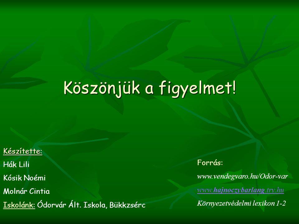 Köszönjük a figyelmet! Forrás: www.vendegvaro.hu/Odor-var www.hajnoczybarlang.try.hu Környezetvédelmi lexikon 1-2 Készítette: Hák Lili Kósik Noémi Mol