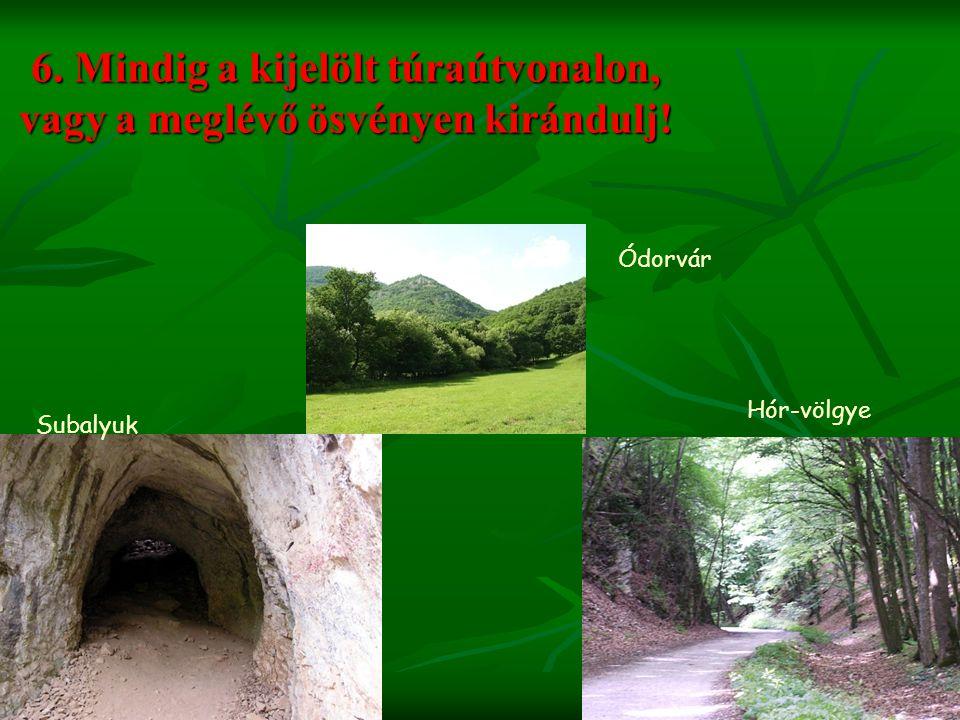 6. Mindig a kijelölt túraútvonalon, vagy a meglévő ösvényen kirándulj! Subalyuk Hór-völgye Ódorvár